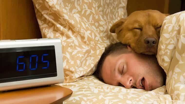 Un perro duerme con la cabeza apoyada en la cabeza de su dueño.  Un reloj digital junto a la cama marca las 6:05.