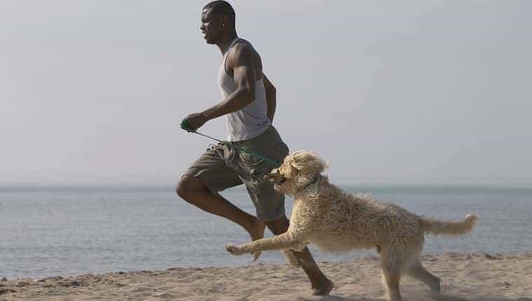 Hombre africano corriendo con perro en la playa