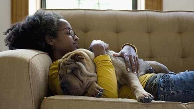 joven abrazando a shar pei en el sofá