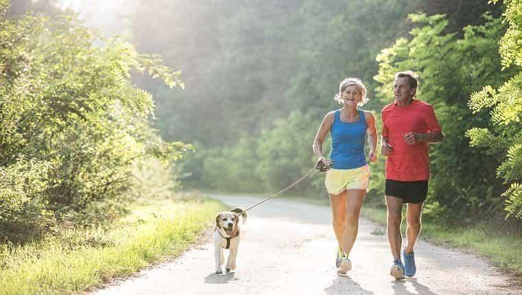 Pareja senior activa con perro corriendo afuera en la soleada naturaleza verde