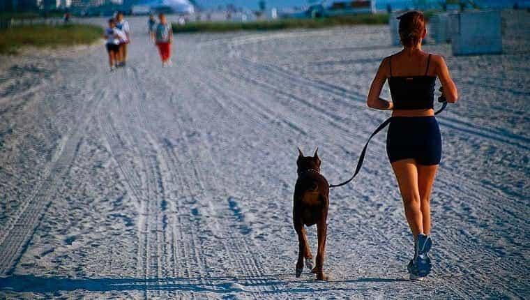 mujer corriendo y perro en la playa, fl