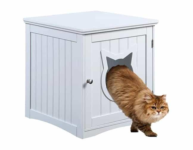 Recinto de mesa auxiliar Cat House