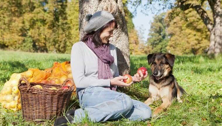 Mujer recogiendo manzanas con perro