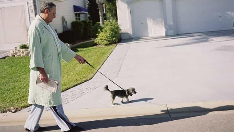 Hombre mayor, en, bata de baño, ambulante, con, perro, vista lateral
