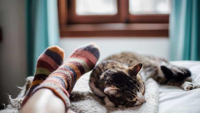 Gato y humano durmiendo