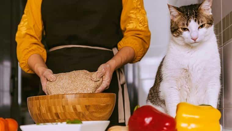 Mujer preparando deliciosa pizza con su dulce gato.  Concepto hecho en casa.