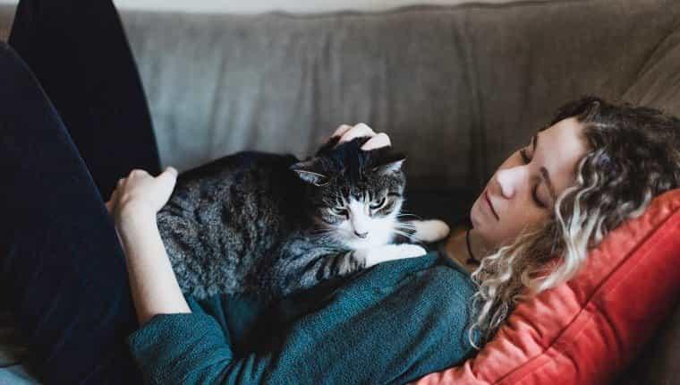 niñera acariciando a un gato durante la semana de cuidado de niños profesional