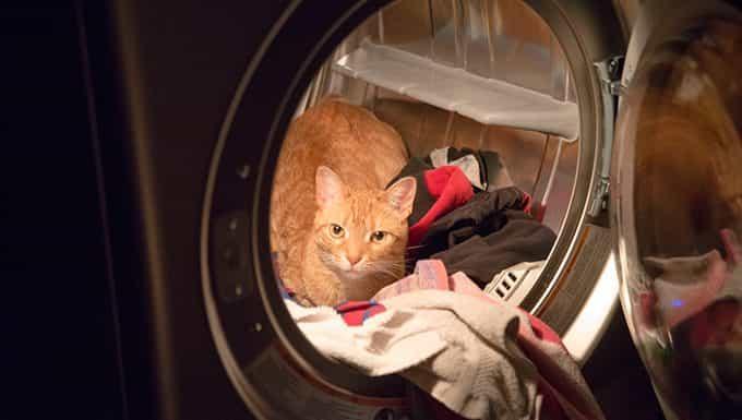 Incidencias con la secadora