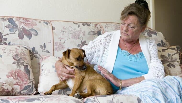 Una anciana en un estado de ánimo infeliz busca consuelo en su mascota.