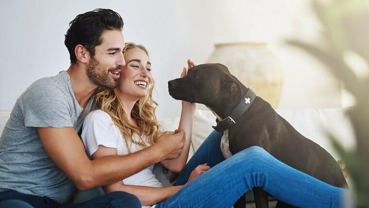Foto de una joven pareja relajándose en casa con su perro.