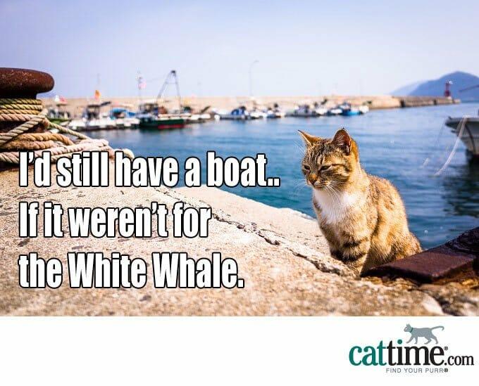 ¿Debo tomar un bote?