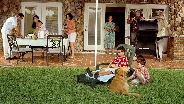 No hay perros cerca de la barbacoa caliente.