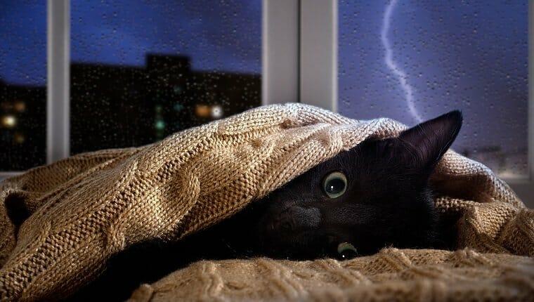 Cuidado con las tormentas y los fuegos artificiales