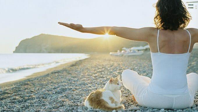 mujer haciendo yoga en la playa con gato