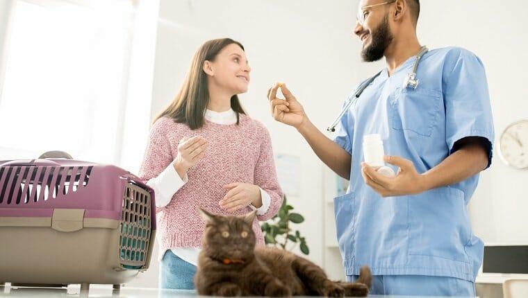Joven veterinario profesional que consulta al dueño de una mascota enferma y le muestra vitaminas o aspirinas para la salud