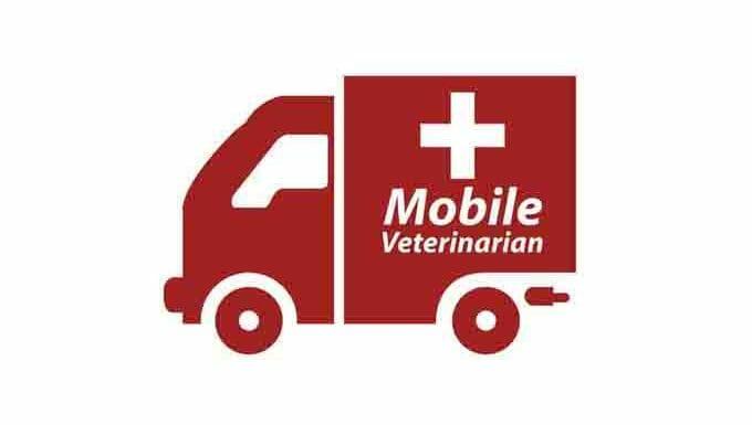"""Dibujo de una ambulancia que dice """"veterinario móvil"""""""