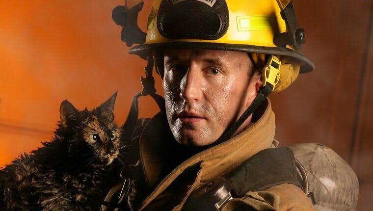 bombero y un gato