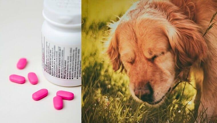 Pastillas rosas y frasco de medicina
