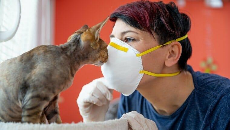 Una dueña de una mascota adulta mediana besando a su gato con una máscara protectora durante la pandemia de coronavirus.